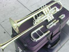Berkeley Double Bell Bb C /F G Piccolo Trumpet (Silver Gold)