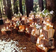 Dramatic stacked wood stump backdrop for wedding ceremony altar. Wedding Ceremony Ideas, Wedding Themes, Wedding Decorations, Ceremony Backdrop, Reception, Wedding Altars, Wedding 2015, Autumn Wedding, Rustic Wedding