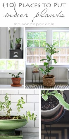 click for 10 ideas of places to put indoor plants! via maisondepax.com #decor #design