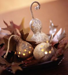 dried gourds into luminarias.  Use pre-dried gourds, already hollowed, from the craft store (Michael's) and battery operated tea lights.