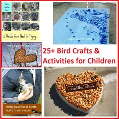 25+ Bird Crafts and Activities for Children - Something 2 Offer