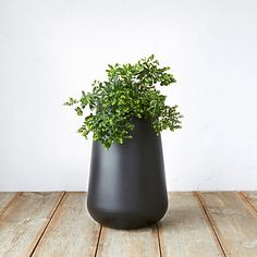 Pure Droplet Tall Planter, 12""