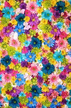 49 Ideas for wallpaper vintage floral iphone posts Trendy Wallpaper, Pretty Wallpapers, Flower Wallpaper, Pattern Wallpaper, Wallpaper Backgrounds, Iphone Wallpaper Vintage Hipster, Vintage Backgrounds, Deco Floral, Motif Floral