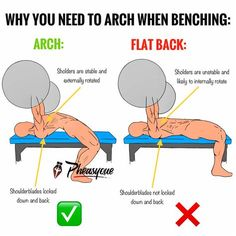 fitness - Gain Chest Mass And Boost Your Bench Press Gym Tips, Gym Workout Tips, Workout Challenge, At Home Workouts, Bodybuilding Training, Bodybuilding Workouts, Bodybuilding Motivation, Chest Workout Women, Chest Workouts