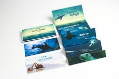 AimAs part of our continued support for Taronga Zoo we were asked to create a memorable invitation, intended to inspire guests to attend the red-carpet event. This year's cause were Australian Sea-Lions: proceeds supporting breeding facilities and marine…