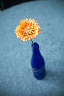 Cute- if we found blue bottles with yellow gerbera daisies.