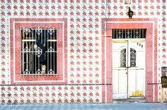 Digital Download Door Photograph Door by MiTierraEsTuTierra