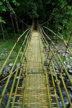 bamboo bridge in the Chin Hills of Myanmar // Helga So-Hartmann