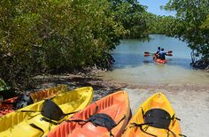 Oleta River State Park -- Canoeing and kayaking is a big draw at the park.
