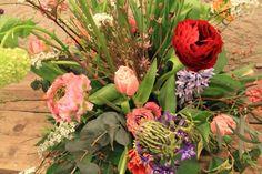 #boeket Delft, Plants, Plant, Planets