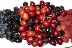 red fruits!