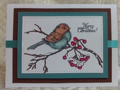 WT663 The Winter Bird by Precious Kitty - Cards and Paper Crafts at Splitcoaststampers