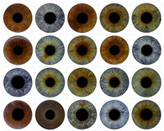 Eye Art! Turn your guests' eyes into stunning abstract art. If you look closely, every iris contains an incredible galaxy of colours and patterns, each more individual than a fingerprint. This is a great way to get your guests talking at corporate events and exhibitions - Art Entertainment