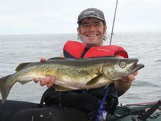 big pollack fishing
