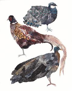 Three Pheasants Stacked Illustration and design by Michelle Morin