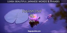 For Learners: 50 Beautiful Japanese Words & Phrases Pt. 7 Beautiful Japanese Words, Japanese Phrases, Japanese Language Learning, Turning Japanese, Special Words, Unique Words, Countries Of The World, Proverbs, Adventure Travel