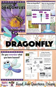 Check out this All About Dragonflies nonfiction unit for your 1st, 2nd, or 3rd grade students. You will get a book with text features, worksheets, lap book assembly guide, and craft pattern. Also included is a booklet which contains graphic organizers and writing activities. The activities include identifying the main idea and supporting details, note-taking, opinion writing, expository writing, story writing, tracing, drawing and coloring. Fun Bug and Insect Activity!