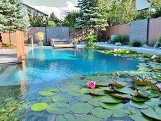 Idée piscine naturelle à partir d'une piscine traditionnelle