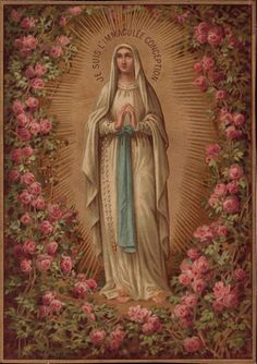 """I am the Immaculate Conception."""
