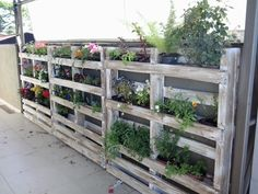 Garden wall made with leftover pallets and flowers :)   #Flower, #Garden, #PalletPlanter, #PalletsWall, #RecycledPallet