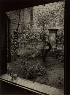 Josef Sudek's The Window Of My Studio - Spring In My Garden, Prague, 1954