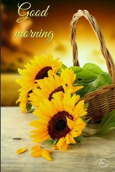 Very good morning my dearest ranji have a beautiful beautiful day enjoy every moment of you're day smile and be happy take ❤ take ❤ i 💘 you my ranji Nice Good Morning Images, Morning Love, Good Morning Picture, Good Morning Messages, Good Morning Good Night, Morning Pictures, Good Morning Wishes, Good Morning Quotes, Morning Pics