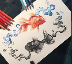 Drawing by Katy Lipscomb