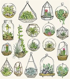 May Van Millingen Illustration Portfolio