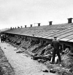 Weak & dying prisoners stretch out on dirt bank behind Bergen Belsen barracks after the concentration camp was liberated by Allied troops. Location: Bergen Belsen, Germany, Date taken: May 1945 Read more: http://histomil.com/viewtopic.php?f=95&t=3918&start=220#ixzz3YqDU5OJW