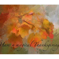 Have a magical thanksgiving!