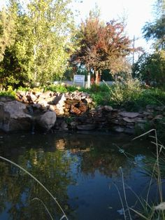 Beautiful pond and landscaping for guests to enjoy.