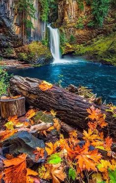 56 Trendy Nature Photography Landscape Trees Fall photography nature landscape is part of Autumn scenery - Beautiful Nature Pictures, Beautiful Nature Wallpaper, Nature Photos, Amazing Nature, Beautiful World, Beautiful Landscapes, Beautiful Places, Beautiful Beautiful, Nature Videos