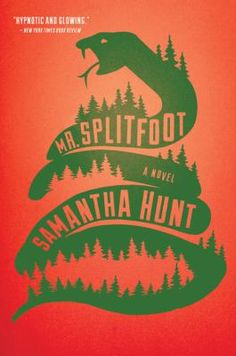 Mr. Splitfoot by Samantha Hunt. Click on the image to place a hold on this item in the Logan Library catalog.