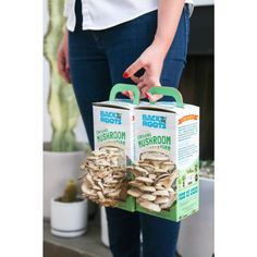 Growing mushrooms at home has never been easier. guaranteed mushroom cultivation right out of the box. No separate mushroom spores or mushroom seeds needed – just add water! Mushroom Seeds, Mushroom Grow Kit, Mushroom Spores, Mushroom Cultivation, Grow Organic, Organic Plants, Growing Mushrooms At Home, Grow Your Own Food, Edible Garden