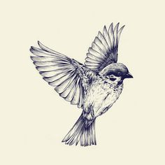 """lost bird by Teagan White ART PRINT / MINI (8"""" X 8"""") Fine art print on natural white, matte, ultra smooth, 100% cotton rag, acid and lignin free archival paper using an advanced digital dry ink method to ensure vibrant image quality. Custom trimmed with 1"""" border for framing."""