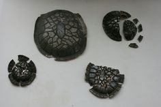 Raku Turtle Shells. Large one is $55.00 available for purchase on my Etsy page CeramicsGallery www.etsy.com/shop/CeramicsGallary?ref=shop_sugg More information on the smaller shells are available there as well.