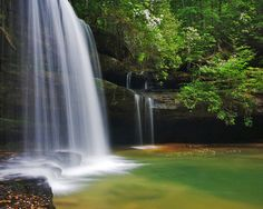 Caney Creek Falls, Bankhead National Forest.