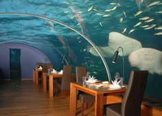 Underwater Restaurant...I want to go to one!!