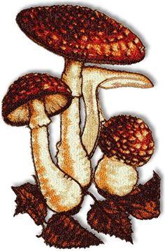 Advanced Embroidery Designs - Mushrooms