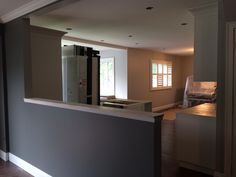 Open Concept, Powder Room, Mirror, Bathroom, Kitchen, Furniture, Home Decor, Trough Sink, Bath Room