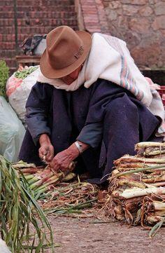 Onion ventor. #Boyacá,  Lo mejor de #Colombia: su gente!