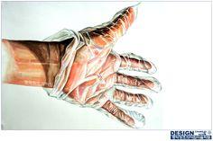 손(인체) & 비닐장갑