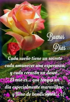 Buenos días familia Morning Memes, Morning Love Quotes, Good Day Quotes, Morning Greetings Quotes, Good Morning Prayer, Good Morning Funny, Morning Blessings, Good Morning Messages, Good Night Flowers