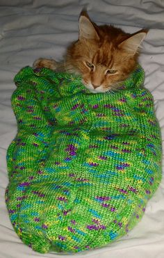 Ravelry: Caterpillar Cocoon pattern by Amanda Barry