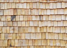 School building clad in chestnut shingles by Dauphins