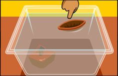 BrainPOP Jr. has a number of ideas for teaching about sinking and floating.