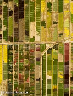 Aerial photograph of a flower farm  California Agriculture  Fairfield, California  Image ID: AHLB2422  © Herb Lingl/aerialarchives.com