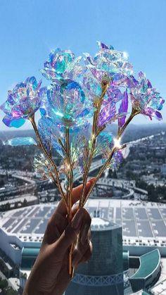 Bereiten Sie einer Person einen besonderen Tag mit der 24K DIAMOND FOREVER ROSE 💎🌹 Jede Rose ist in 24 Karat Gold getaucht, sorgfältig handgefertigt und hält für die Ewigkeit! 💖  Jetzt bestellen mit kostenlosem Versand exklusiv nur bei uns ➡️ waagemann.de/forever-rose    Superschnelle Lieferzeit: 1-3 Werktage! 🚚📦 Cristal Rose, Forever Rose, Rose Shop, Magical Jewelry, Pastel Wallpaper, Crystal Flower, Leaf Design, Rose Petals, Cute Jewelry