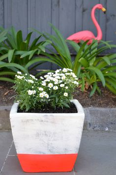 DIY Neon Dipped Stripe Flower Pot
