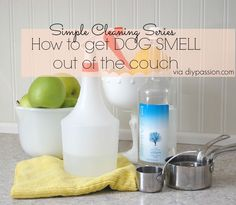 Cleaning Dog Smell out of your couch - 3 parts water, 1 part vodka, spray bottle. Repeat as needed.